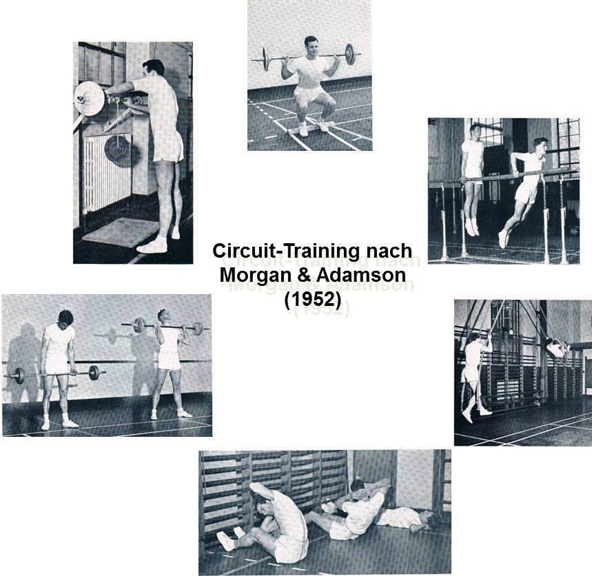 Circuit-Training nach Morgan und Adamson (Dr. Klee)